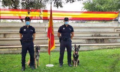 Unidad Canina de la Policía Local de Arroyomolinos
