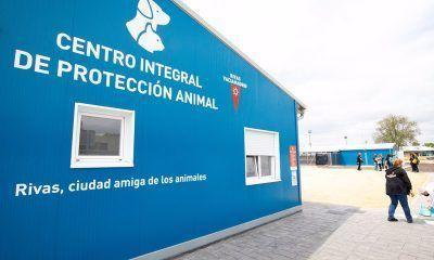 Rivas animales heridos Ávila