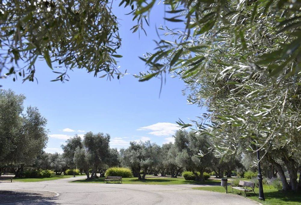 parques y jardines de Valdemoro