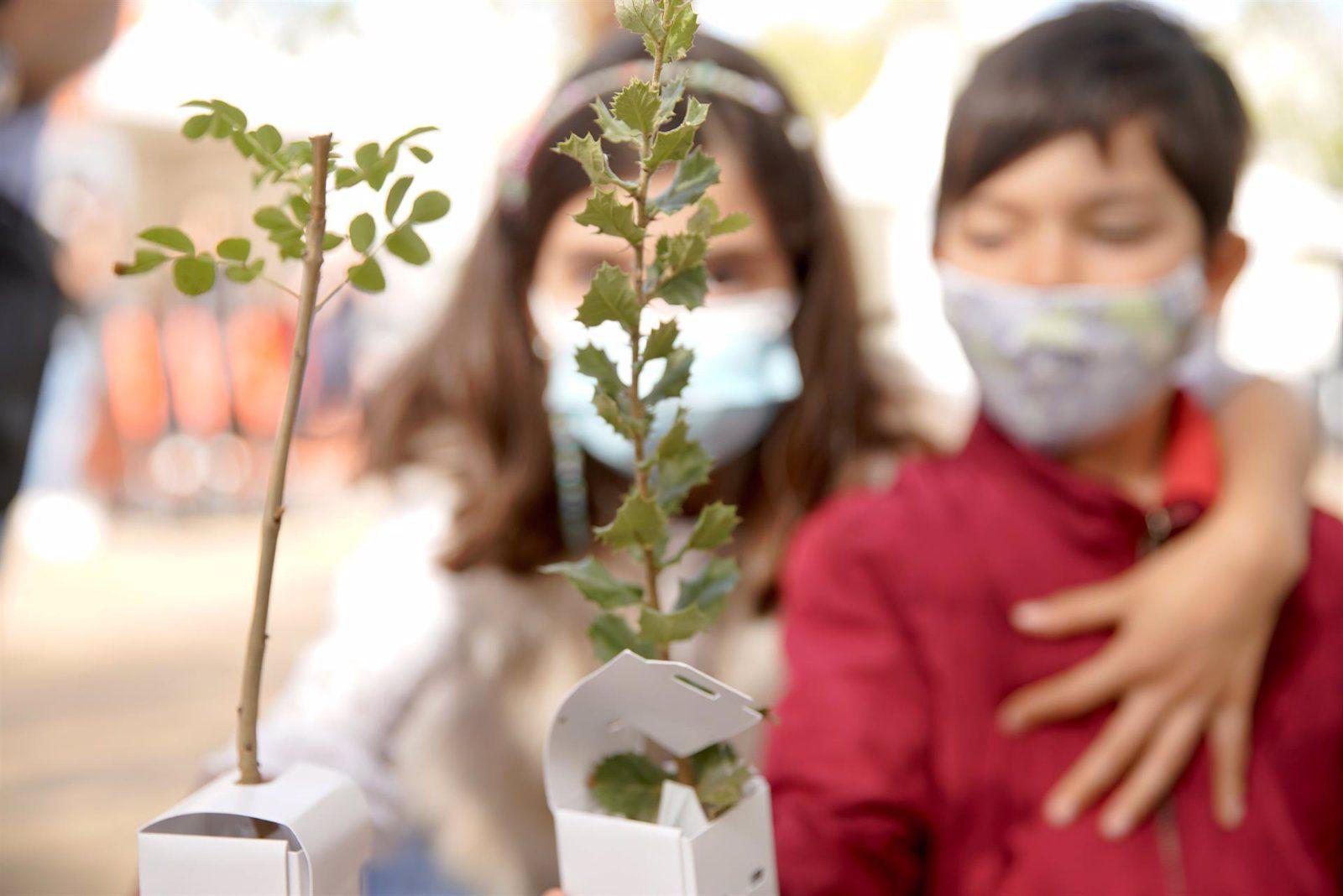 Las Rozas plantar árboles
