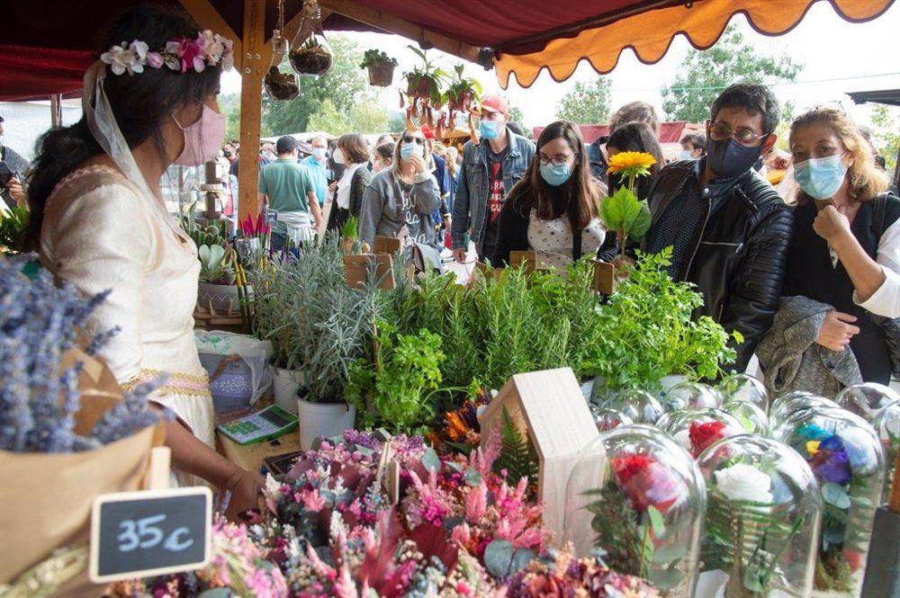 Mercado Cervantino de Alcalá